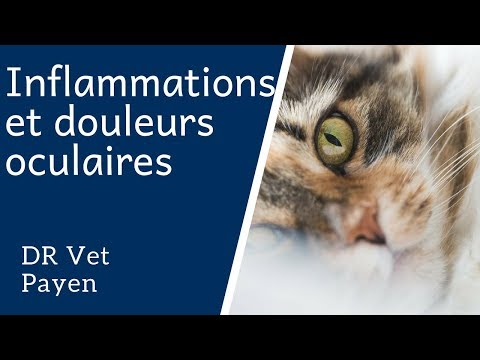 Inflammations Et Douleurs Oculaires