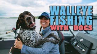 German Shorthairs go fishing in South Dakota!