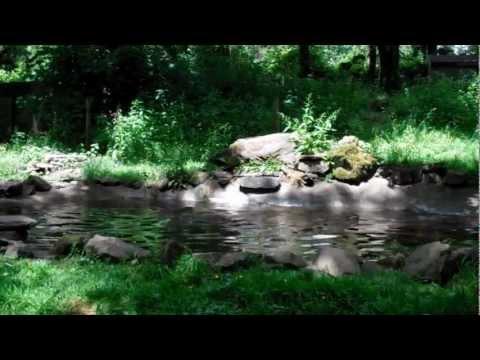 Dartmoor Zoological Park Trip