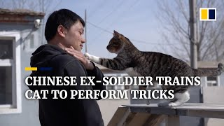 Chinese ex-soldier trains cat to perform tricks
