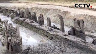 湖北荆州:考古发现三座中国最早的木桥 |《中国新闻》CCTV中文国际 - YouTube