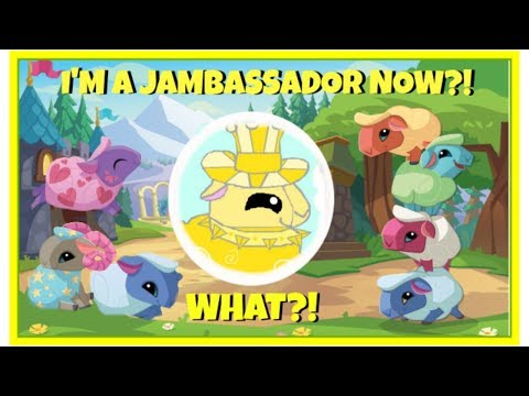 Apparently, I'm A Jambassador Now?!