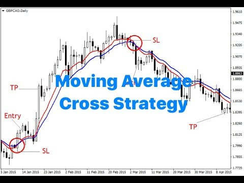 100% profitable Moving Average crossover strategy