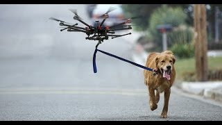DOGS VS DRONES COMPILATION!