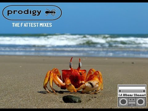 The Prodigy - The Fattest Mixes [Unofficial] Mp3