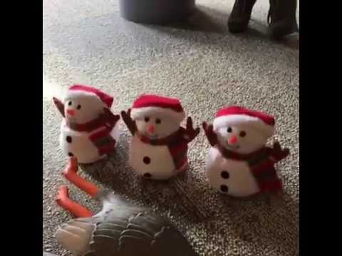 Screaming Ducks + Screaming Snowmen - Vine