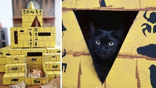 EPIC DIY Pyramid for Cats!