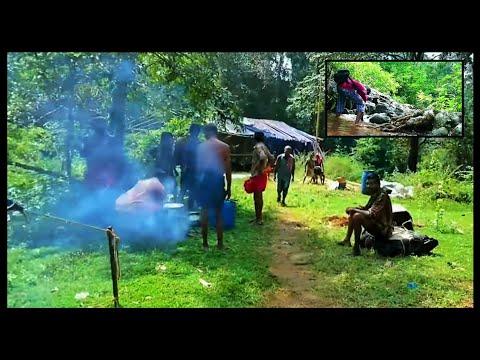 എരുമേലിയിൽ നിന്ന് പമ്പയിലേക്കുള്ള പരമ്പരാഗത കാനനപാത Sabarimala Traditional Trekking Path Forest