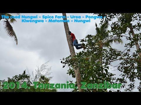 MyWay. Tanzania. Zanzibar. 2014. 03 Nungwi-Spice Farm-Uroa-Pongwe-Kiwengwa-Matemwe