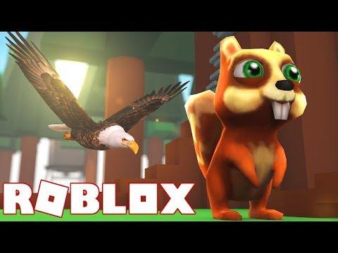 KUŞ OLUP, BÖCEK YEDİK / ROBLOX Bird Simulator / Roblox Türkçe