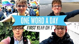 One Word A Day - First Year On Testosterone