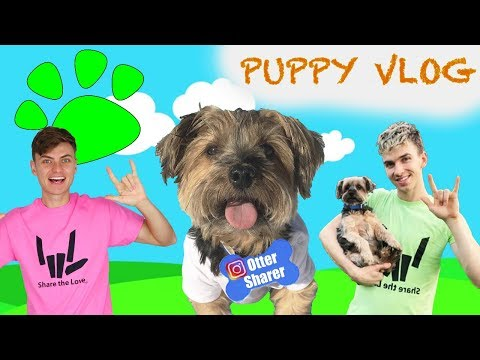PUPPY EXPLORING ADVENTURE WITH STEPHEN SHARER AND CARTER SHARER 🐶 (FIRST PUPPY VLOG EVER!!)