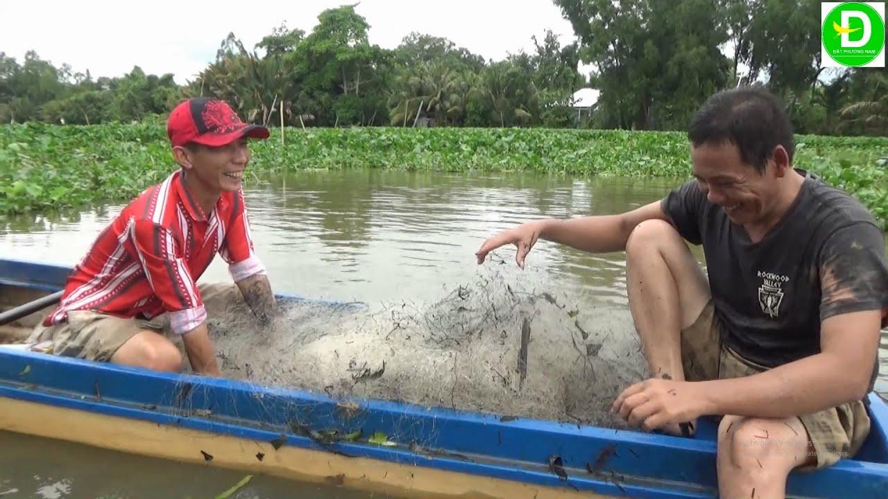 133  Bao Lưới Bắt Cá Tra Miền Tây | Đất Phương Nam