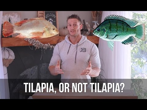 Is Tilapia Good For You? 3 Fish to Eat instead of Tilapia