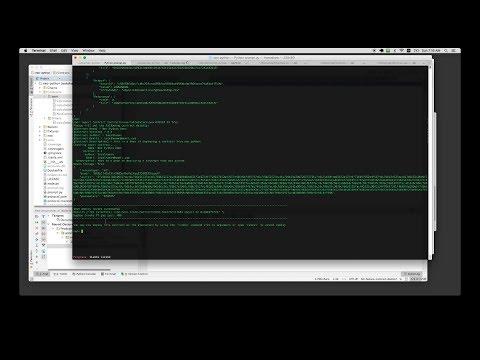 neopython deploy smart contract demo