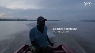 Cocos y gambas para sobrevivir en La Tolita | Planeta Futuro
