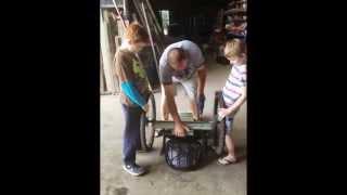 Speedies Building Their Churchie Prep School Billycart 2013