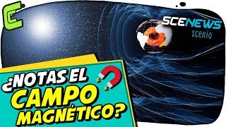 ¿Pueden los humanos sentir los campos magnéticos? | SCENEWS | Noticias Científicas
