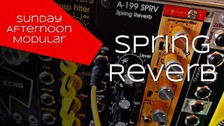 Doepfer A-199 Spring Reverb with Accutronics Spring Tanks