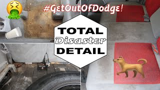 DISASTER Car Detailing | Deep Cleaning Dirtiest Car Interior | Complete Vehicle Transformation!
