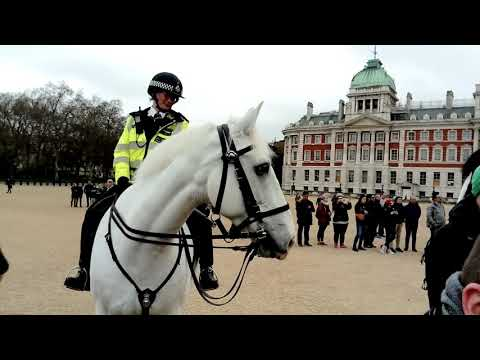 White Police horse - Changing of the guard 2018