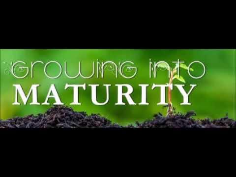 Sermon on growing into maturity