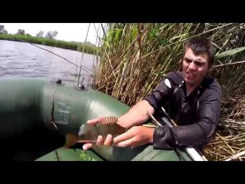 ловля рыбы без снастей