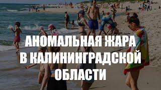 МЧС предупреждает об аномальной жаре в Калининградской области
