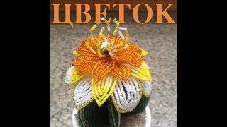 Цветок для кактуса. A big flower for a cactus. Бисер с Анной. Бисероплетение.(В этом видео я покажу, как споести большой цветок для кактуса. Цветок из бисера. Белый, желтый бисер. Бисер..., 2014-02-20T15:36:54.000Z)
