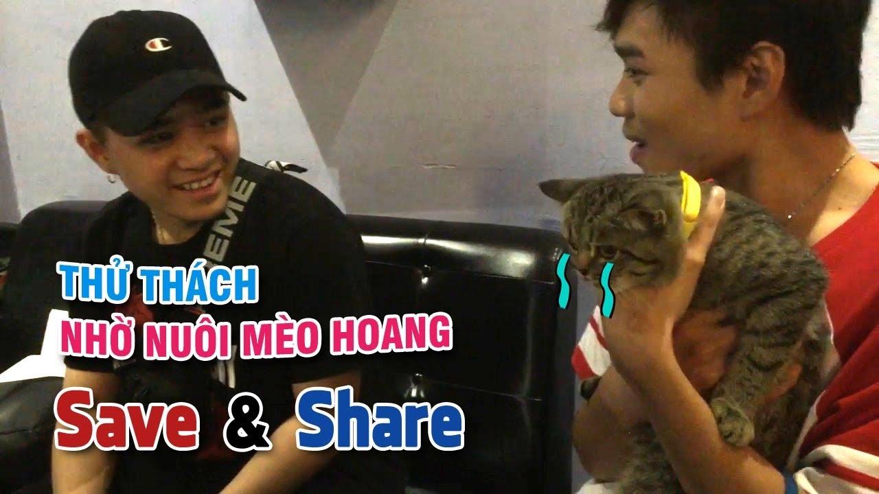 ???? LIVESTREAM cùng WANBO (Tập 7): Thử Thách Nhờ Người Lạ Nuôi Mèo Hoang (29/07)