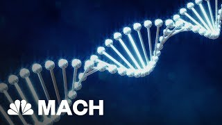 First Human Embryo Editing Experiment In U.S.; Possible Future 'Designer Babies'? | Mach | NBC News