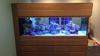 Mr. Saltwater Tank's 450 Gallon Build Update Part 2