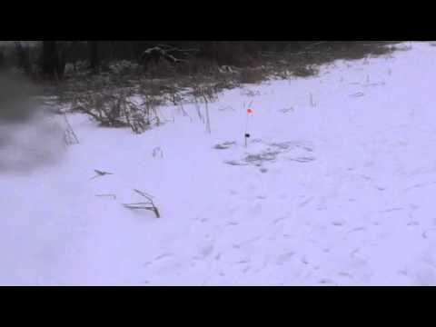 конструкция и ловля на жерлицы