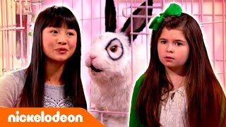 Los Thundermans   Volver a robar a Dr. Colosso   Nickelodeon en Español
