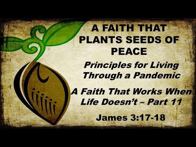 A Faith That Plants Seeds of Peace