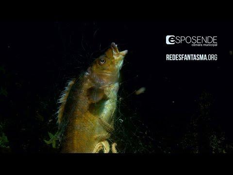 Fantasmas do Litoral Norte  / Ghost in north Portugal seas - Documentary
