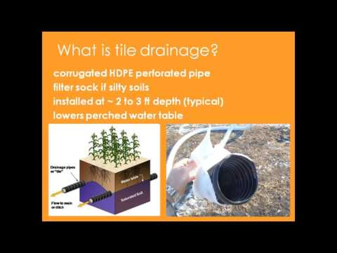 Tile Drainage Webinar 1 - What Does Tile Do for My Land and Crops