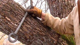 How To Build A Treehouse | 18 Wranglerstar