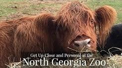 North Georgia Zoo, Cleveland, Ga.