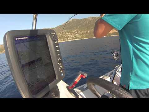 Sinarit,furuno,jigging,inchiku,balık Avı, Dentex Fisihing,fishing