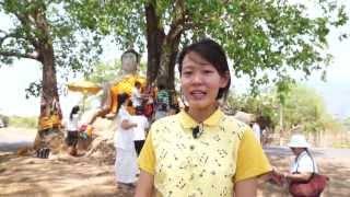 วัดร้างกลางเมืองจำปาสัก Laos