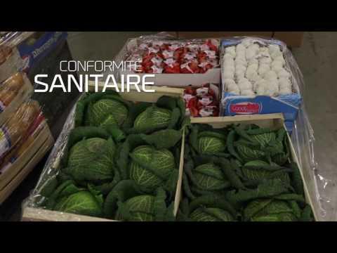Food Reefer - Expert en logistique du froid - Bolloré Logistics
