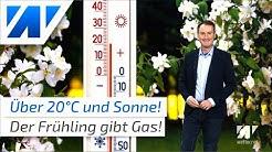 Frühlingshammer ab dem Wochenende! Nächste Woche 20°C und mehr!
