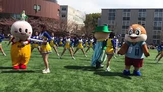 関西大学応援団 チアリングオンステージ2 オープンキャンパス 2018.3.24 thumbnail