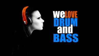 Best Drum & Bass Mix 2014 - HD 1080p - DJ FL4SH