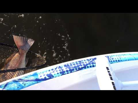 Bobby Jones 2014 October Fishing Part 10