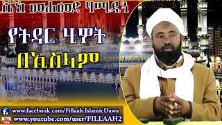 YeTidar Hiwot Beislam ~ Sheikh Mohammed Hamidin