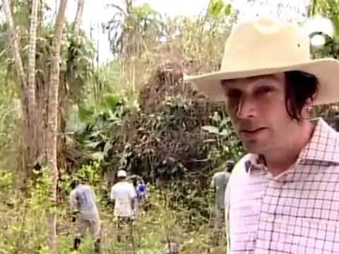 Diario De La Cocaina [Documental] [Spanish]