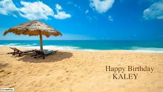 Kaley  Nature & Naturaleza - Happy Birthday