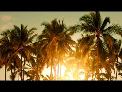Avicii - The Nights (Mau Kilauea's Tropical Remix)